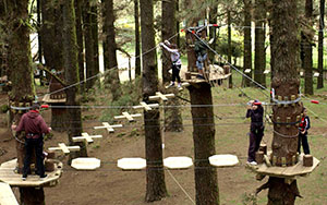 forestal-park-madrid5