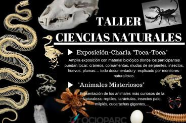 Taller y Museo Móvil Ciencias Naturales